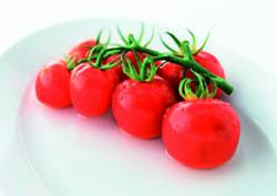 Rivista pasta > Conserve di pomodoro