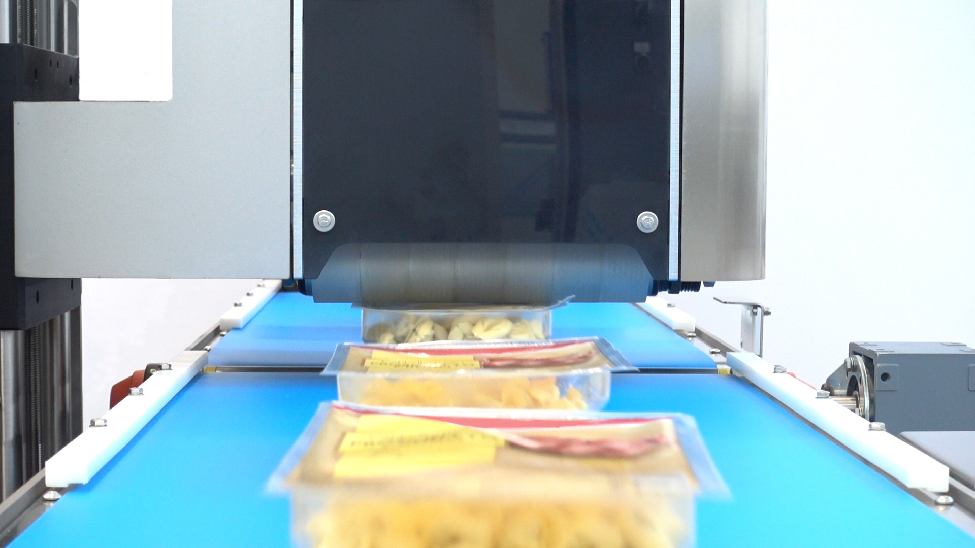 In-Line leak detection solutions for fresh pasta packed in MAP: new technologies for the food industry